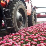 WITH GOOD REASON: GREAT TIRES FOR ROW-CROPS