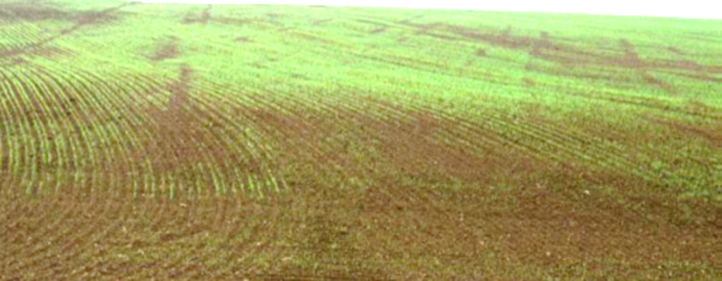 The consequences of soil compaction: decreased yields